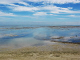 Veteran beach & low tide