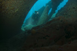 Diver on propeller of RMS Rhone