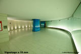 MOT_3290.jpg