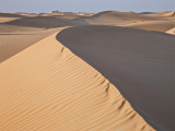 Al Ain Desert Dunes