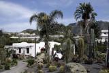 Giardini Ravino (Forio Ischia) - 2008