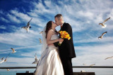 Marina & Oleg Wedding Highlights