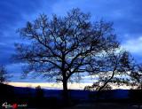 Casentino sunset