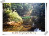Hong Kong Wu Kau Tang 香港烏蛟騰