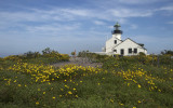 Lighthouse in the Spring