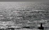 The Sea off Moss Beach