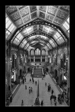 Natural History Museum (EPO_7347)