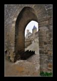 La Cité de Carcassonne (EPO_7697)
