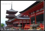 Kiyomizu-dera (Temple)