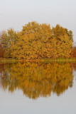 Autumn reflections jesenski odsevi_MG_7515-11.jpg