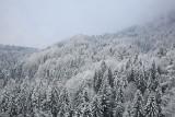 Winter zima_MG_5952-11.jpg