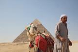 Scene from Giza scena iz Gize_MG_3694-11.jpg