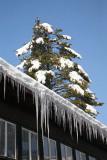 Winter in Ljubljana zima v Ljubljani_MG_6303-11.jpg