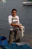 Fisherman ribi�_MG_0278-1.jpg