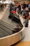 Luggage prtljaga_MG_4219-1.jpg