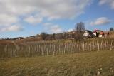 Visole-Slovenska Bistrica_MG_11471-1.jpg