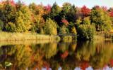 Autumn in  Charlevoix