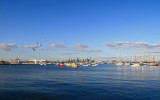Melbourne view from Williamston.jpg