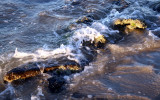 Rocks and Waves.jpg