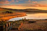 Early light at 'dragon's teeth', Abbotsbury (3143)
