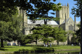 Trees and moat, Wells Cathedral