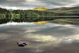 Stone and reflection, Loch Garten