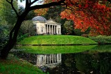 Acer and Pantheon, Stourhead (2356)