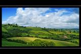 Mid-Devon landscape (3106)