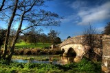 Classic bridge on the Frome, Dorset (3287)