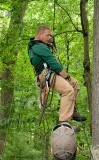 _NW05733 Climber Ascending Nest Tree
