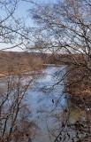 Anacostia River, National Arboretum