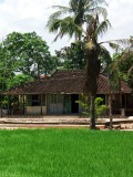 Vietnam' s house.