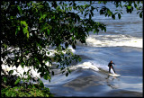 Surfing the St Lawrence River in Montreal.