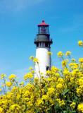 Yaquina Head lighthouse, Newport, OR