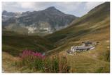 Parc de la Vanoise 2008