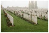 In Flanders fields