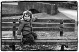 Winter in the Park.jpg