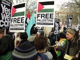 Free Palestine & Jewish leaflet distributor