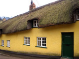 Yellow Thatched House