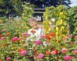Gramma Dodge In Her Flower Garden,1968