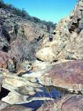 Tool Box Creek ,,, Bad Water , But Had To Do..