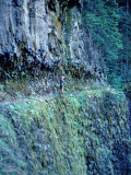 Eagle Creek  Trail , Northern Oregon