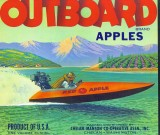 Local Apple Box Labels   Of The Past ( Mostly 1930's Thru 1950's)