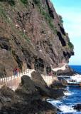 Coastal path, Ulleungdo