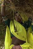 Rural woman, Rajasthan
