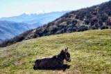 The austere beauty of Macedonian landscape