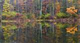 Pond Reflection 1 - New Hampshire