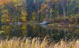 Pond Reflection 2 - New Hampshire