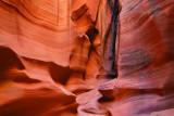 Canyon X 3