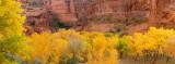 AZ - Canyon de Chelley 2